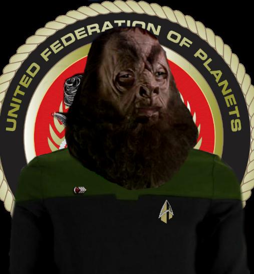 Gunnery Sergeant Flarn